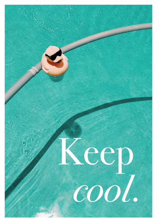 keep cool quote duck