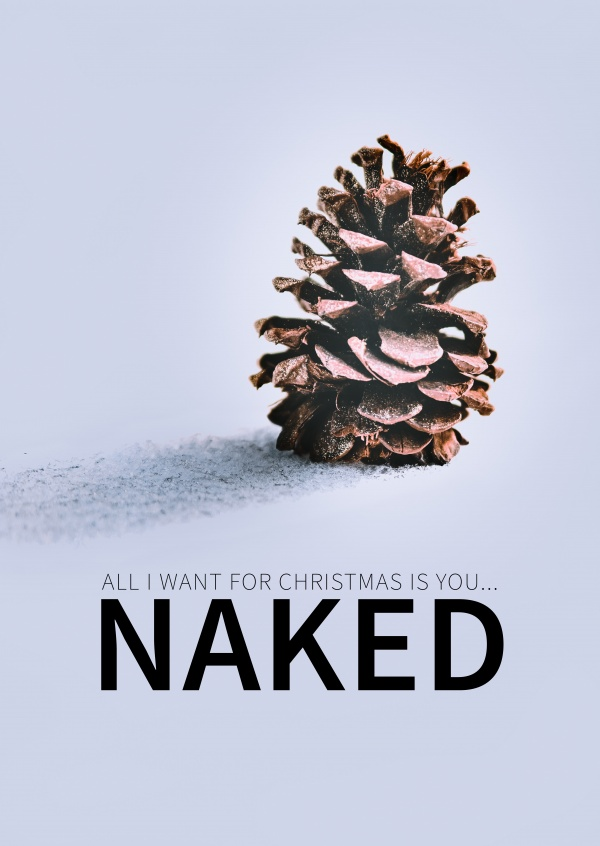 offerte All I want for Christmas is you NAKED