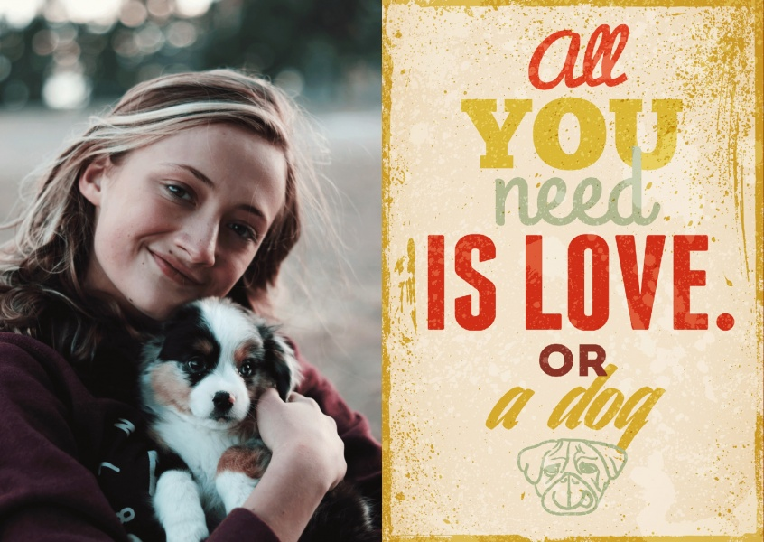 Postkarte All you need is love OR a dog