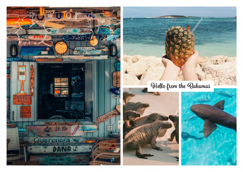 Bahamas fotocollage cocktail aimals surf