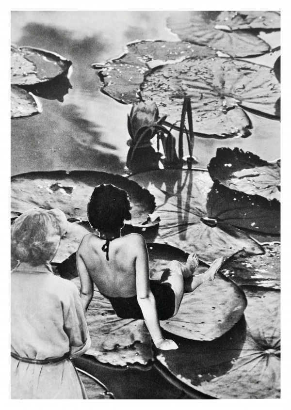 Belrost black n white collage women on lily