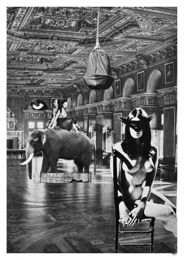 belrost surrealistiskt collage elefant naken tjej