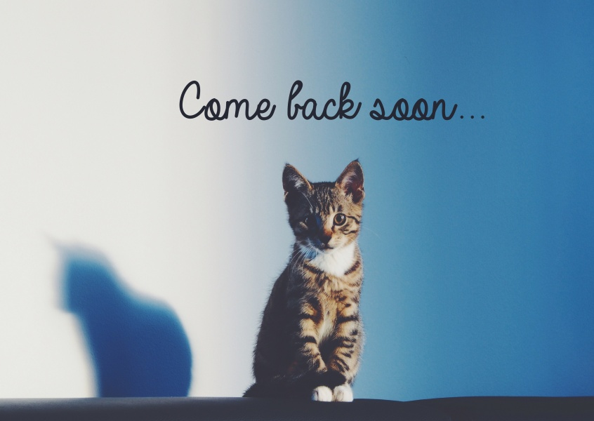 Come back soon