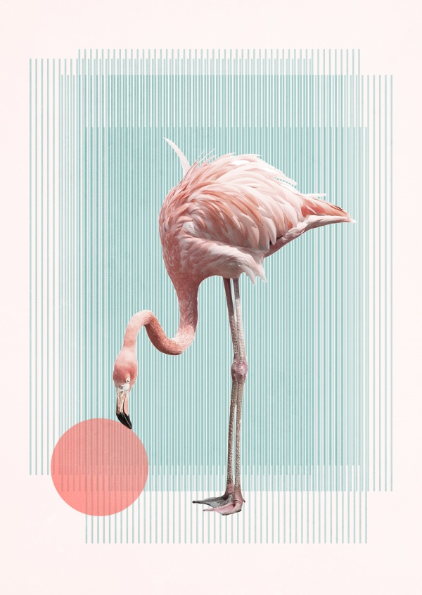 Kubistika Flamingo mit Ball