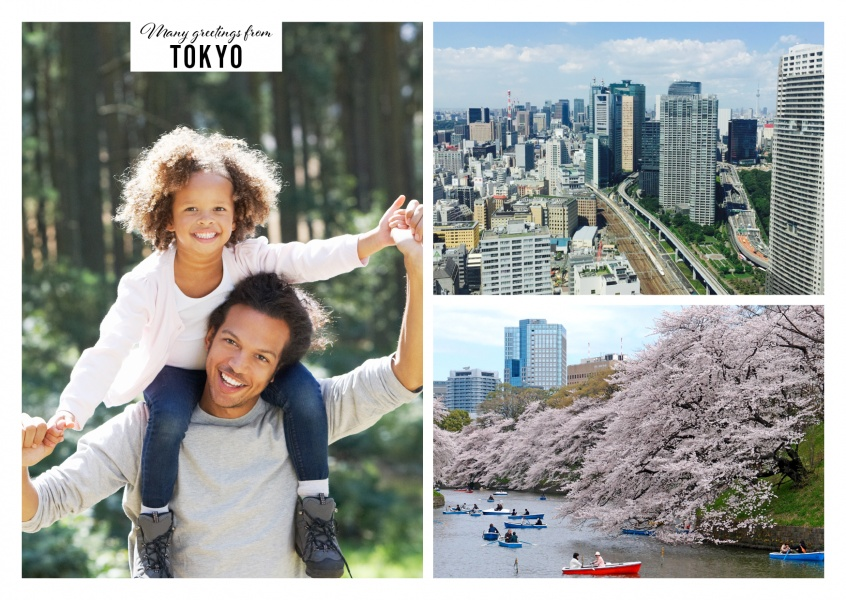 colorful vegetation in cherry blossom-park and busy downtown