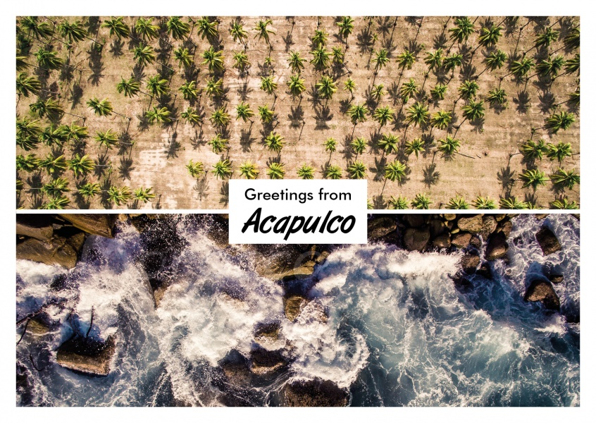 photocllage Acapulco rocks palm trees