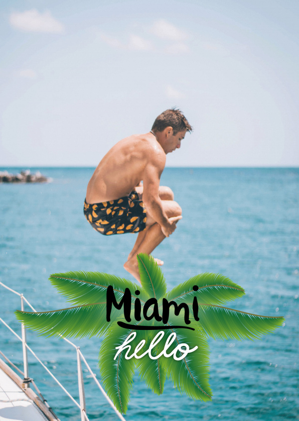 hello miami in black lettering with yellow-green palm leaf in the back