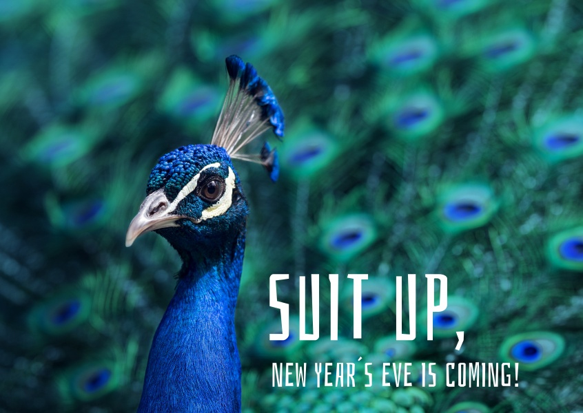 Suit up, New Year´s Eve is coming!