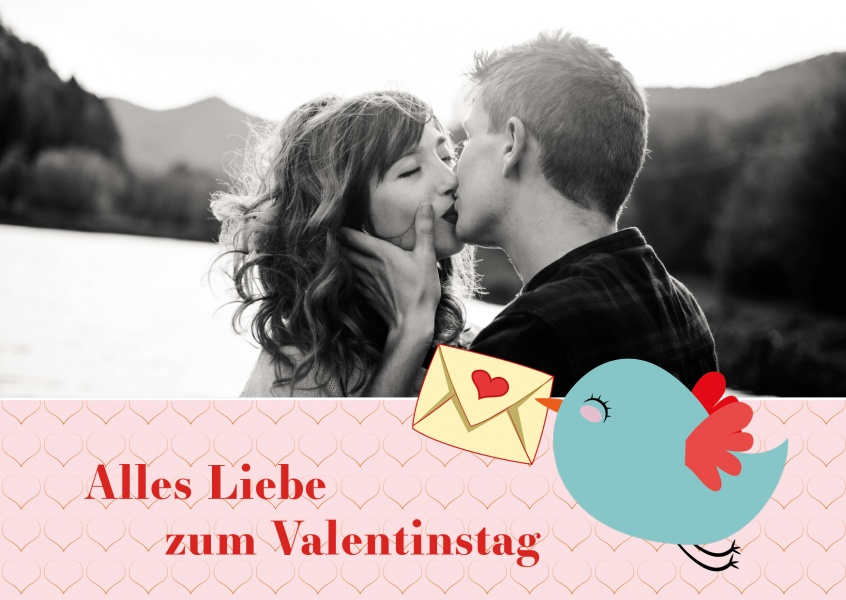 Liebe Vögel Dating Website