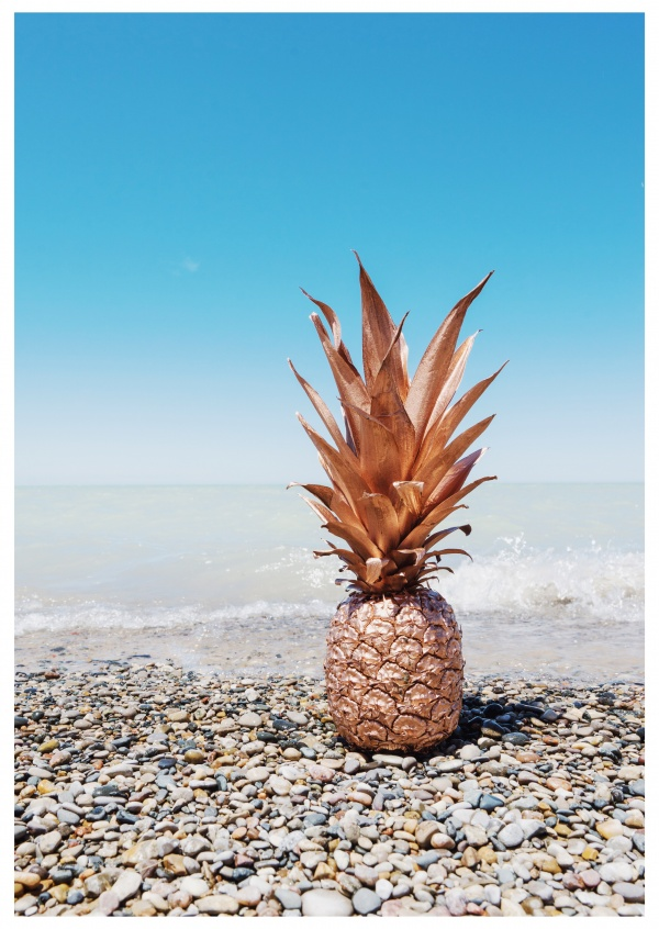 photo platin pineapple at the beach