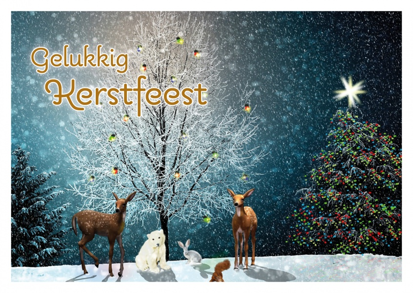 Merry Christmas Cards Send Real Postcards Online