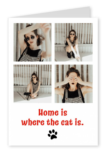 Girls LOVE Travel home is where the cat is