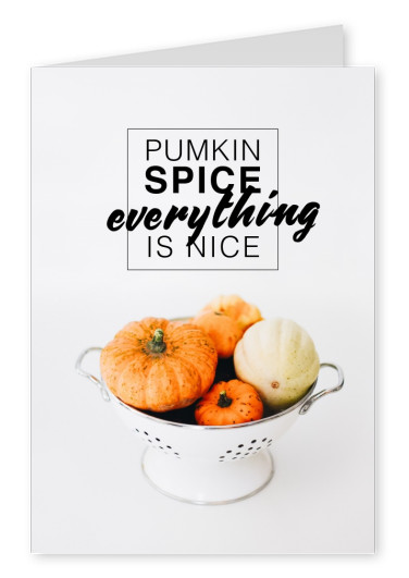 PUMKIN SPICE EVERYTHING IS NICE