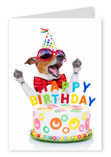 dog and cake with happy birthday letters postcard