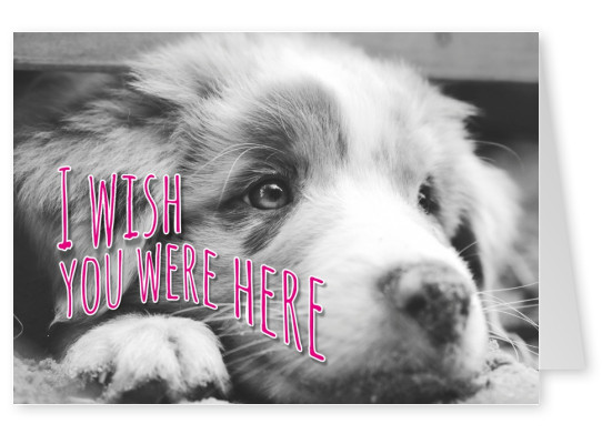 wish you were here postcard template - free printable i love you cards templates print and