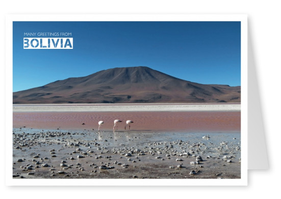 Bolivia Andes Nationalpark