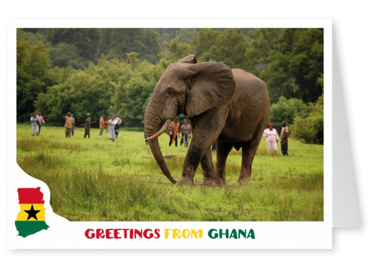 Card with ghana motives