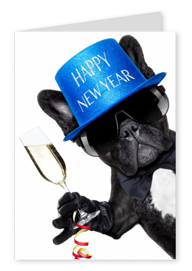 dog with hat and champagne