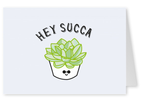 Little succulent in a pot with smiley face, saying Hey Succa