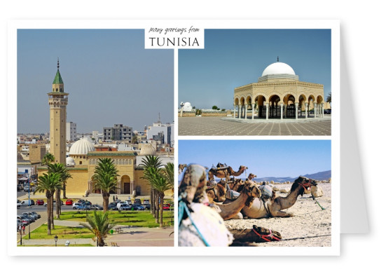 Architecture of Tunisia and Camels