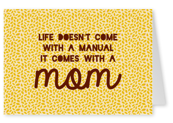 Life doesn't come with a manual., it coes with a mom