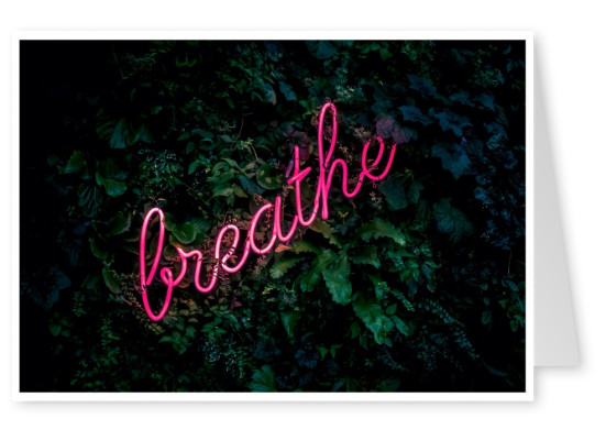 photo neon sign breathe