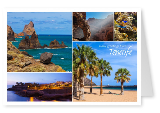 photocollage of Tenerife's nature