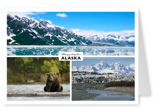 triple collage of Alaska with grizzlybear and yukon river