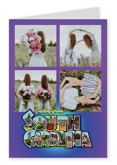Large Letter Postcard Site  Greetings from South Carolina