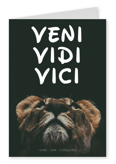 postcard saying venic vidi vici