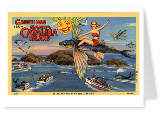 Curt Teich Postcard Archives Collection greetings from Santa Catalina Island