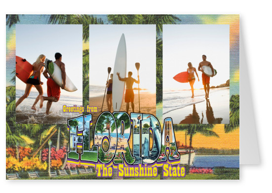 Vintage Grußkarte Large Letter Postcard Site greetings from Florida, the sunshine state