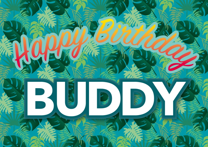 happy birthday buddy postcard
