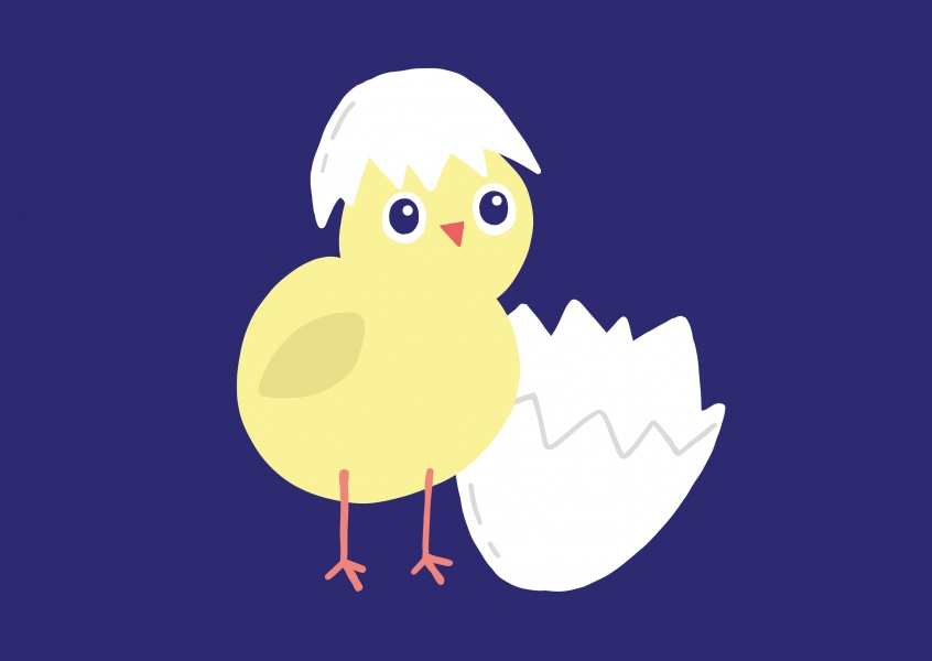Happy Easter! Small cute chick
