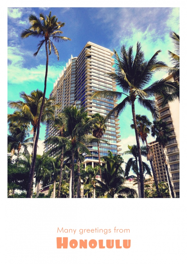 Photo Honolulu Hotel palm trees