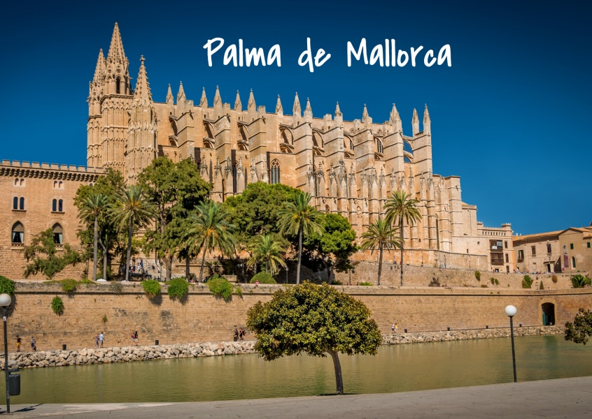 Photo of Palma de Mallorca showing La Seu Cathedral and palm trees–mypostcard