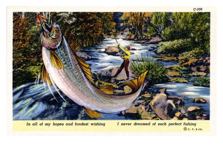 Curt Teich Postcard Archives Collection in a ll of my dreams and fondest wishing I never dreamed of such perfect fishing