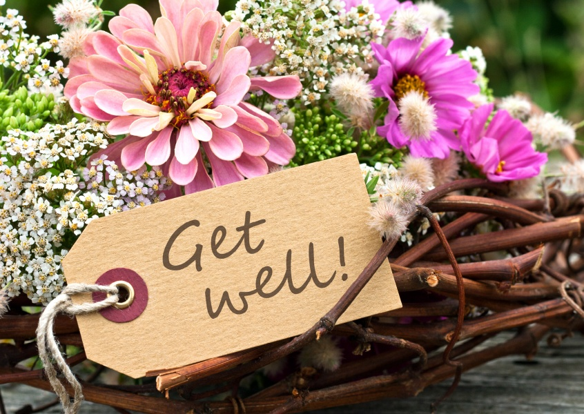 flower get well postcard motive