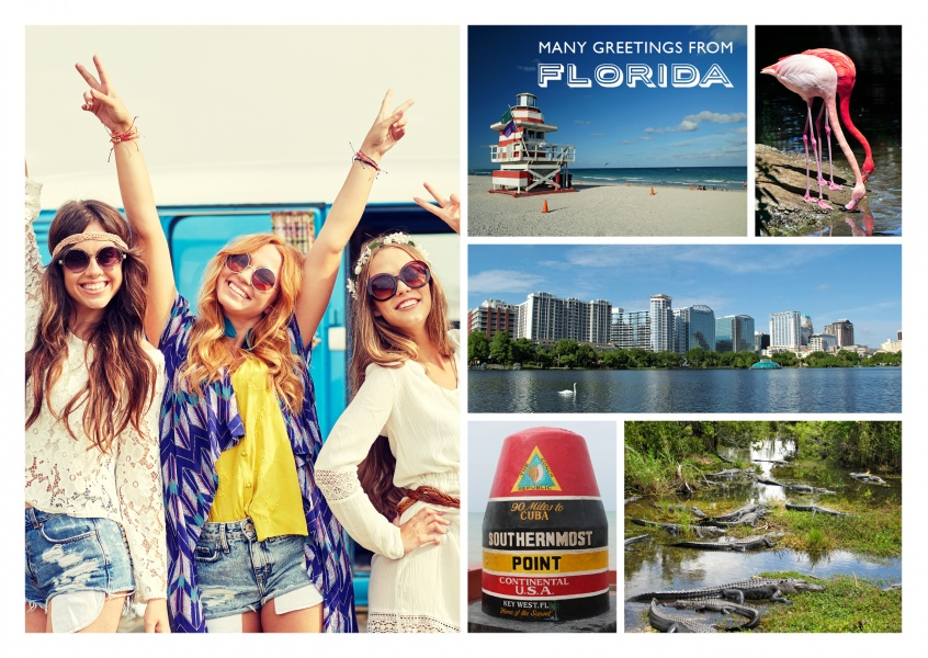 multipic collage of florida showing orlando,key west, everglades and flamingo