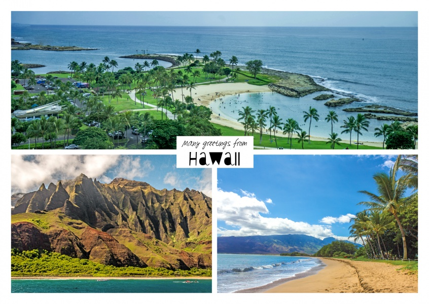 Three photos of hawaii with palm, beach und ocean