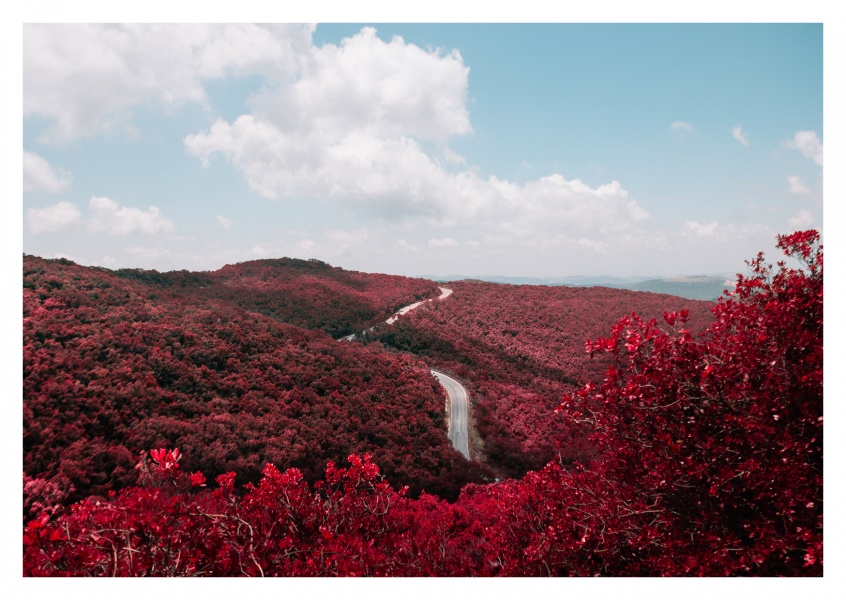 red Landscape with road