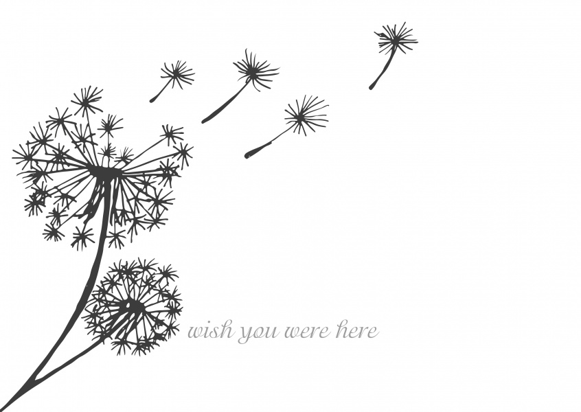 Over-night Design wish you were here