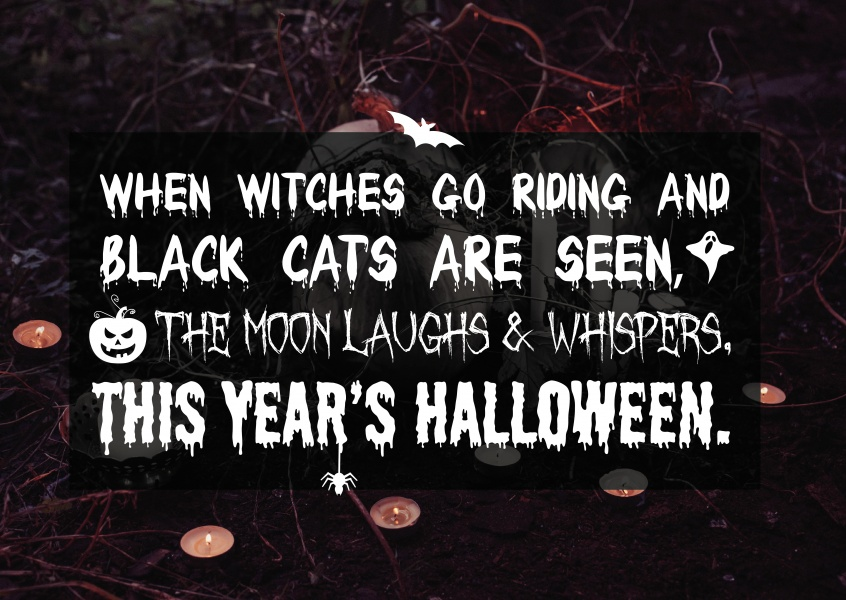 Spruch When witches go riding and black cats are seen ...