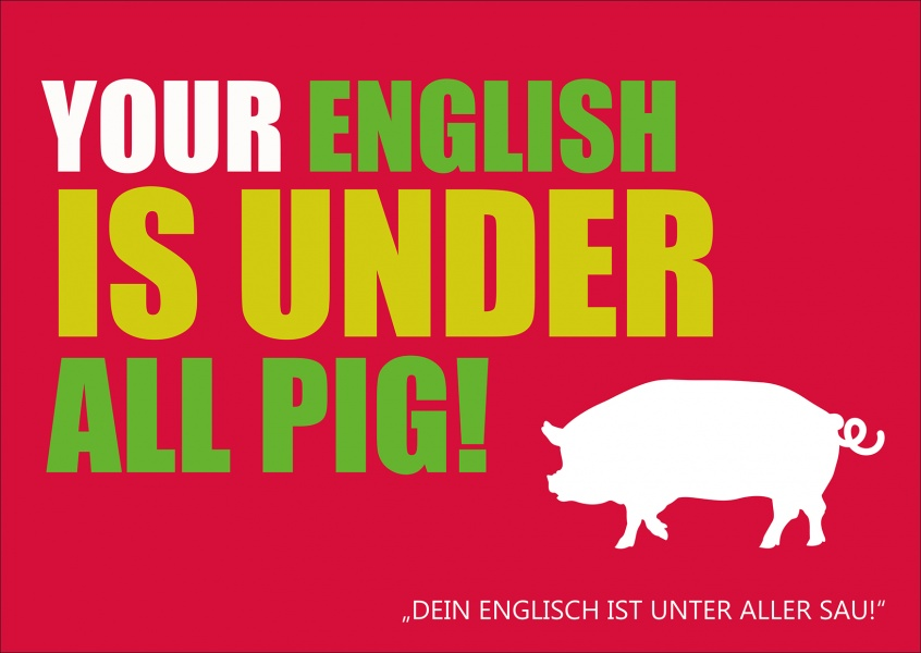 witzige sprüche auf englisch Your english is under all pig |