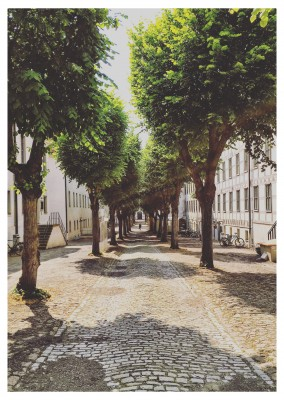 photo postcard Halle an der Saale Die Salzstadt