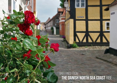 Greetings from the danish North Sea coast – Ribe