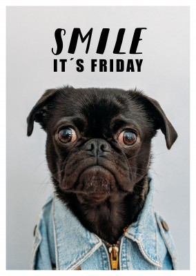 SMILE IT´s FRIDAY - Dog funny quote postcards