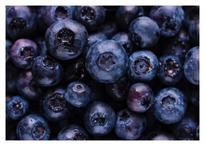 photo blueberries