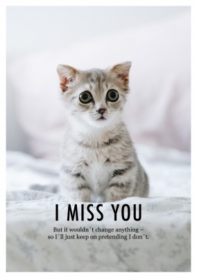 photo cat I miss you quote