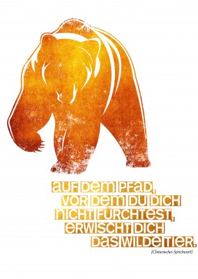 Kubistika Grizzly Bär in orangem it Spruch Das wilde Tier